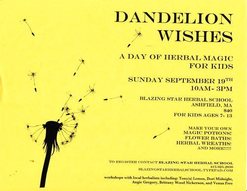 DandelionFlier