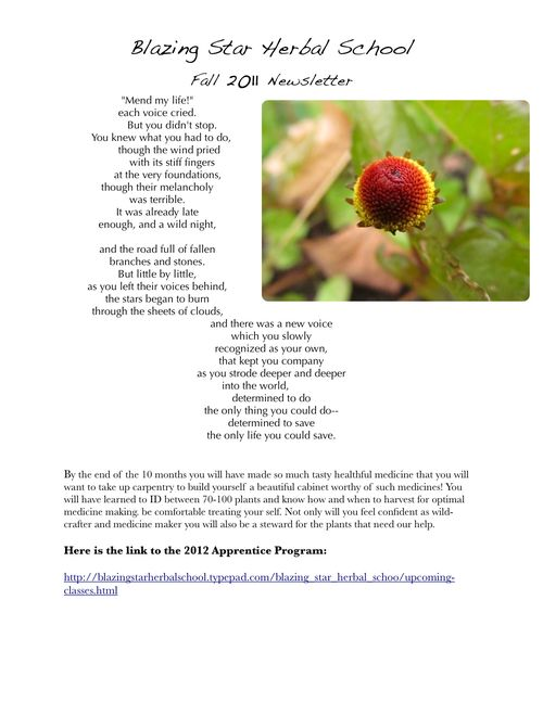 Fall Newsletterj3