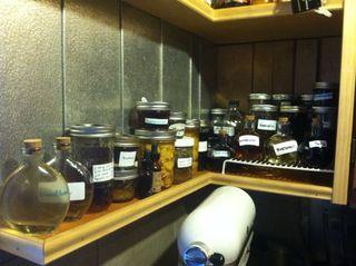 Whitneys medicine cabinet