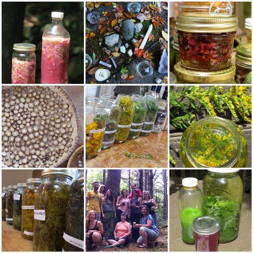 Medicine making